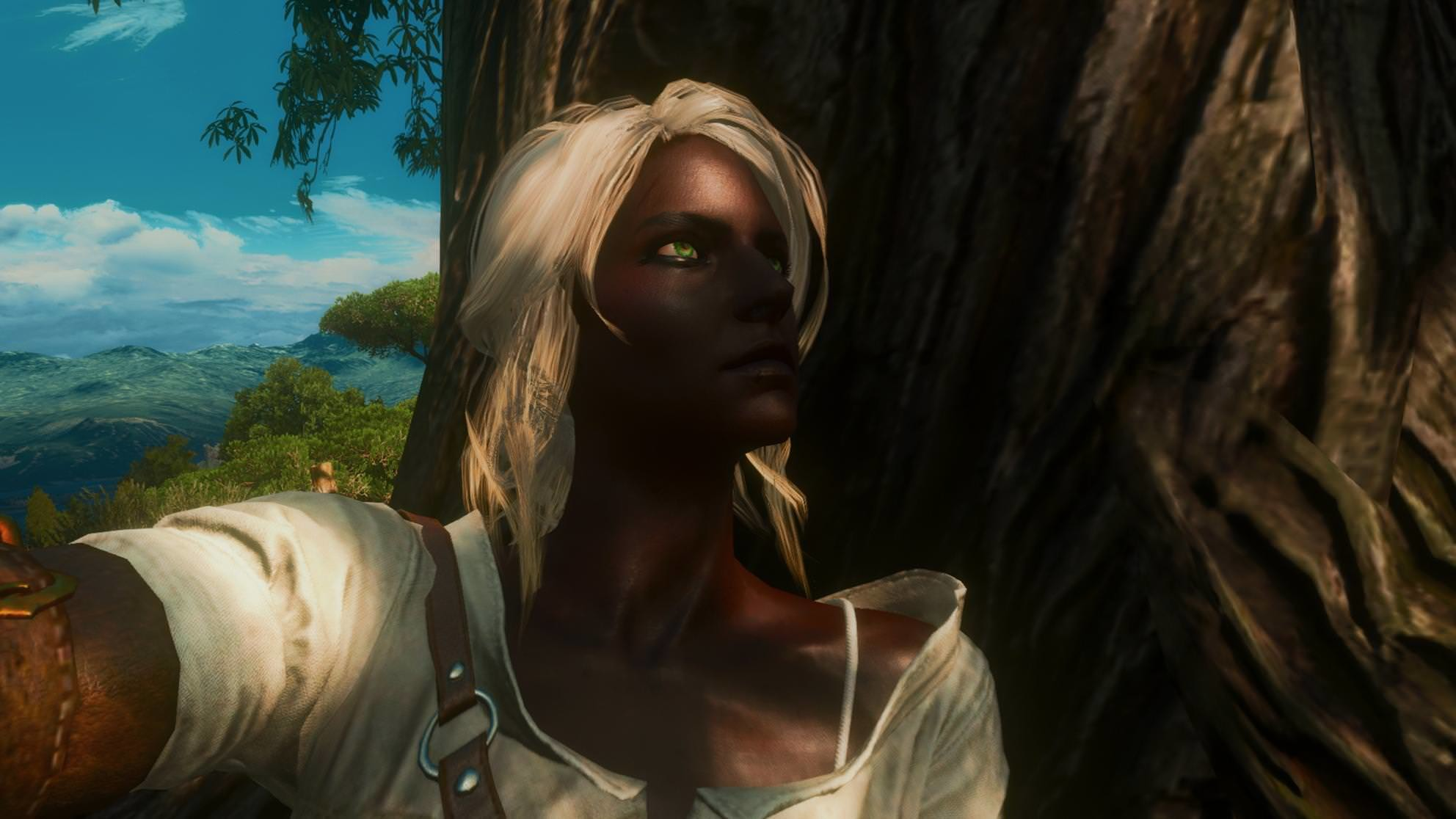 Recent Netflix backlash prompted a black Ciri Mod for Witcher 3