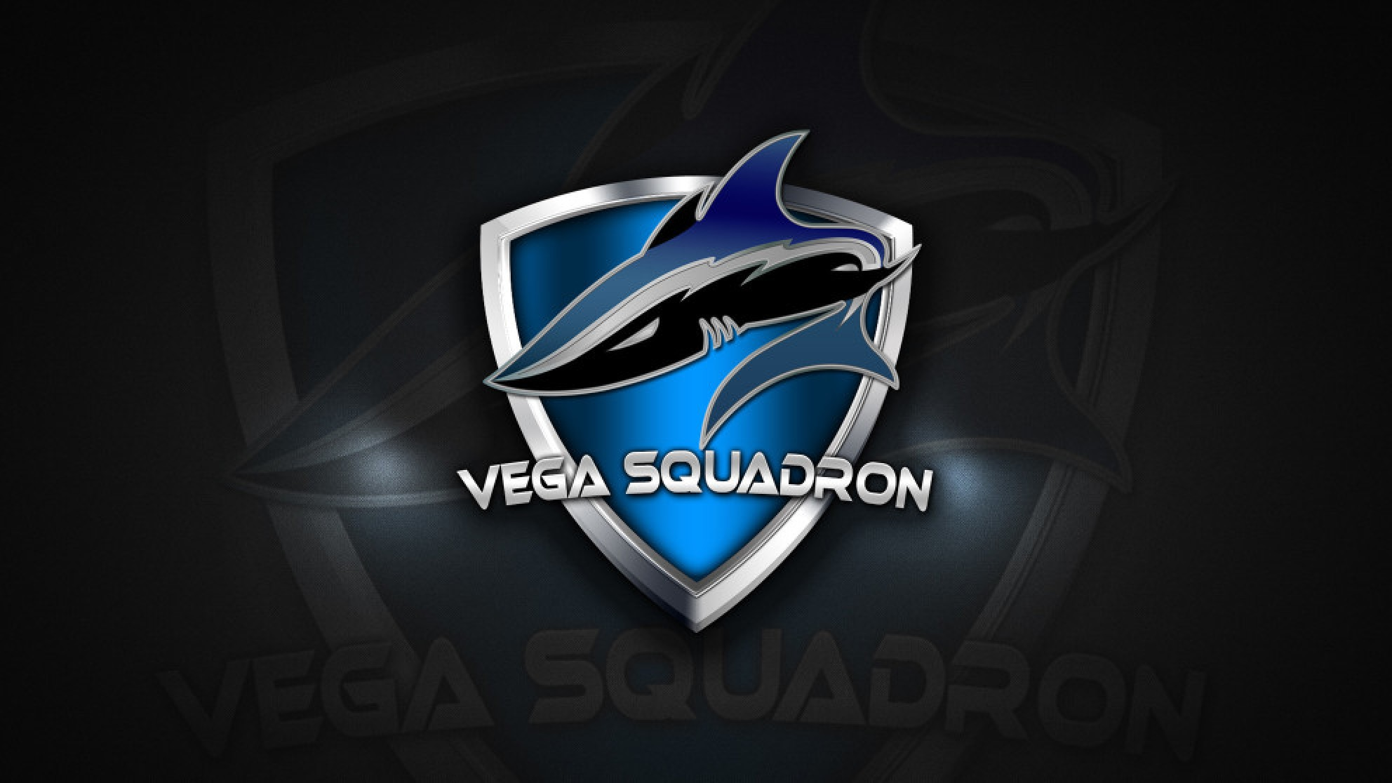 Team Lithium will fight under the banners of Vega Squadron