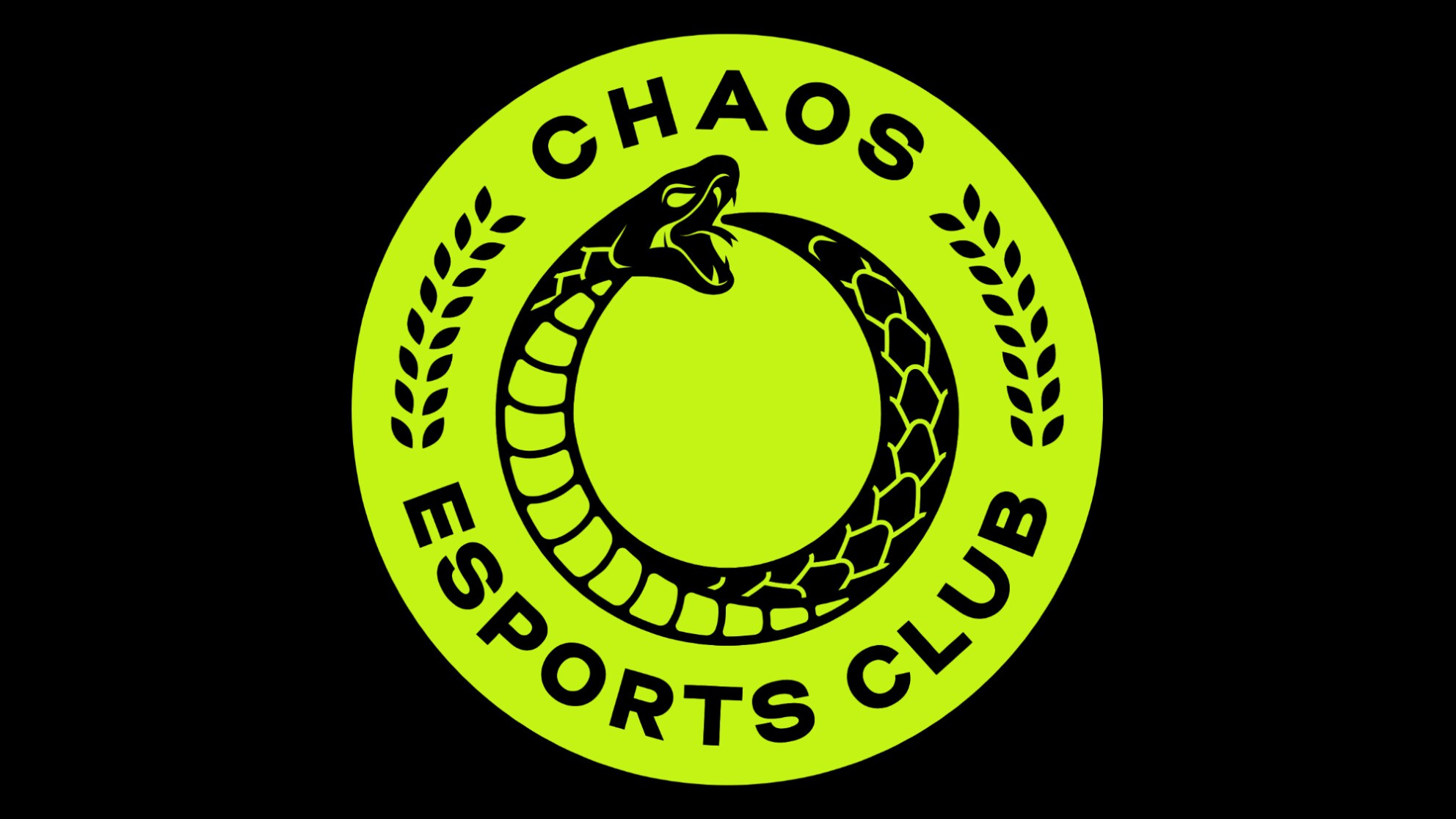 Chaos Esports Club sign DM to complete the squad