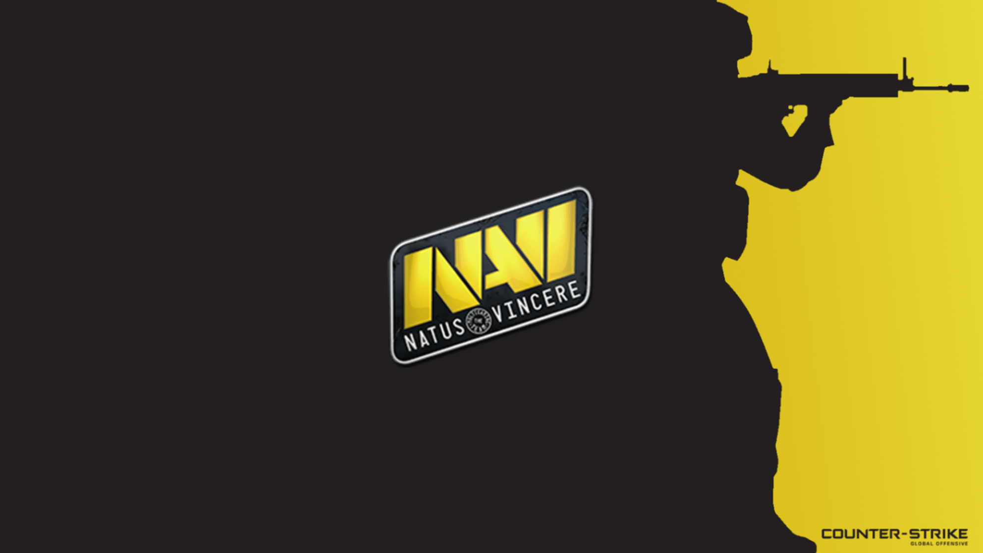 Na'Vi inquires with forZe about FL1T